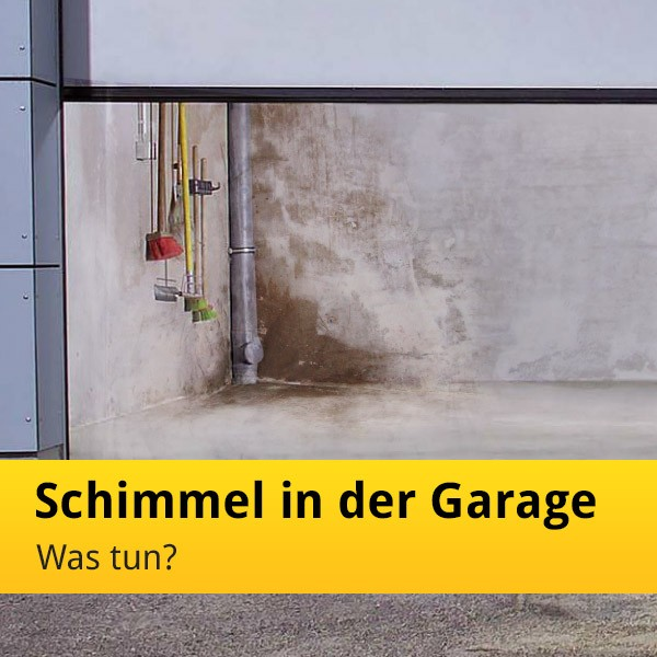 feuchte garage mit schimmel in der garage was tun. Black Bedroom Furniture Sets. Home Design Ideas