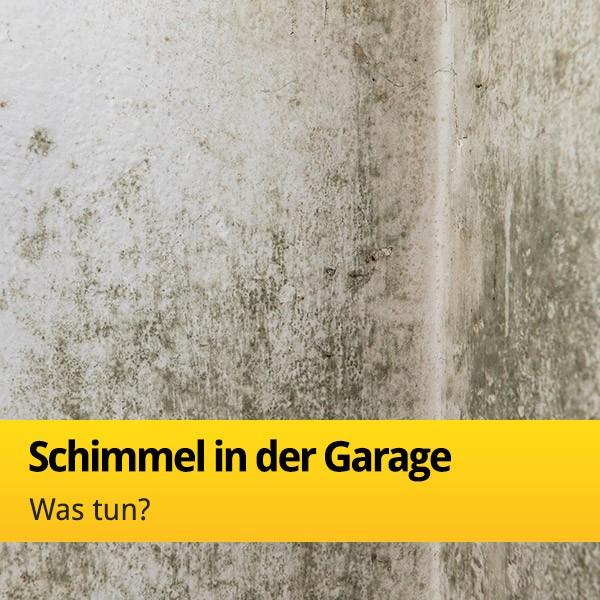 Schimmel in der Garage: Feuchtigkeit vermeiden   Tor7